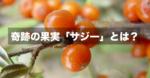 奇跡の果実「サジー」とは?