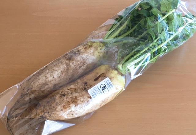 有機野菜 大根
