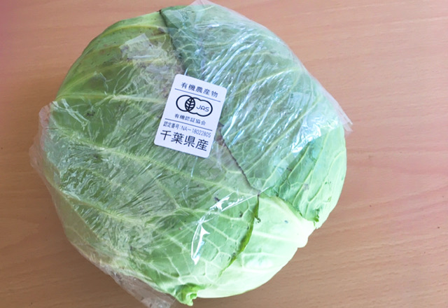 有機野菜 キャベツ