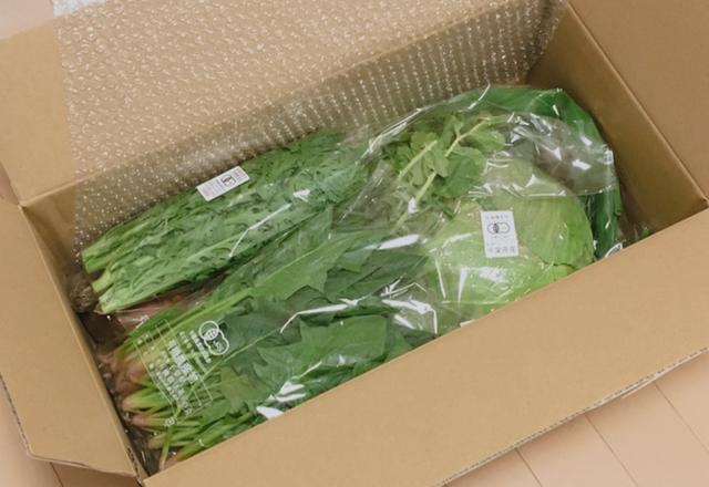 パルシステム有機野菜おためしセット